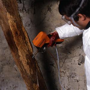 Traiteur charpente bois en place forsapre for Traitement des charpentes par injection